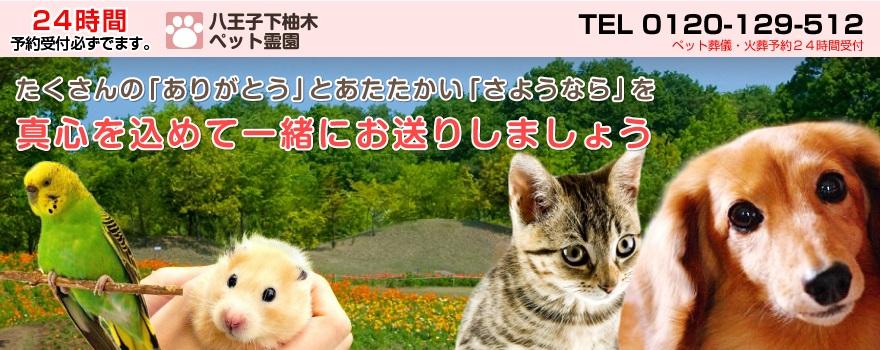 草加市のペット葬儀・火葬 ... - aeonlife-petsou.jp